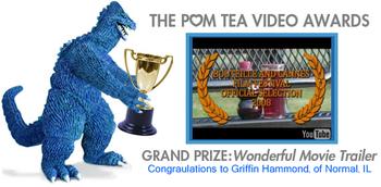 Pomvideoawardswinner_2